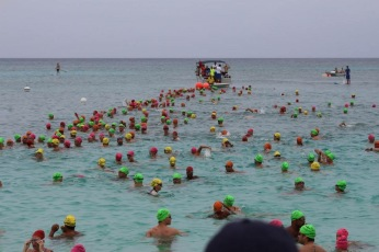 2015 Flowers Sea Swim start line