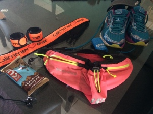 I simply cannot leave the house for my long run without these (and several other) items!