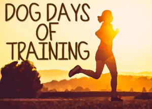 Dog Days of Training