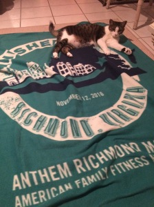 My cat Mendoza loves the finishers blanket.