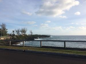 View along South Shore, near John Smith Bay